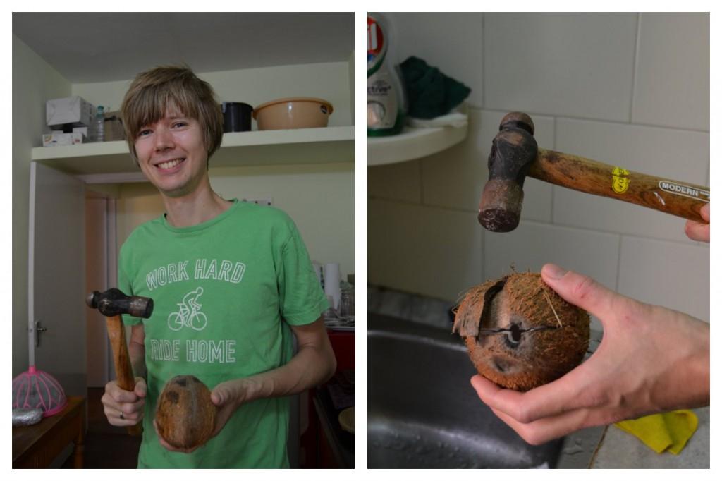 Kokosnuss knacken