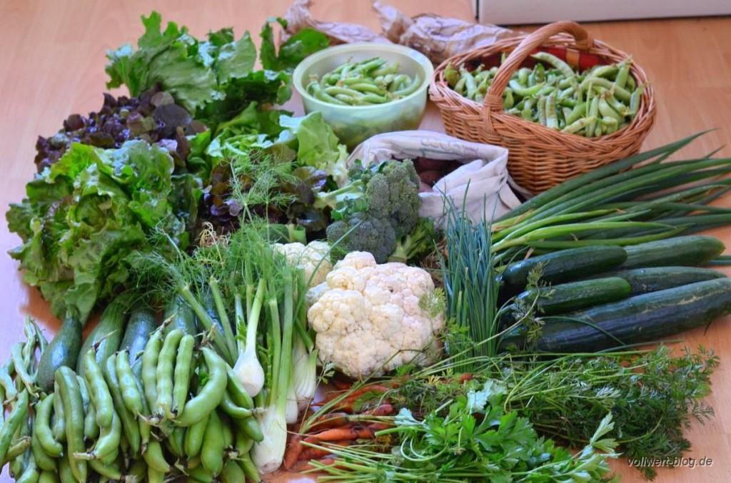 Gemüsevorrat für eine Woche