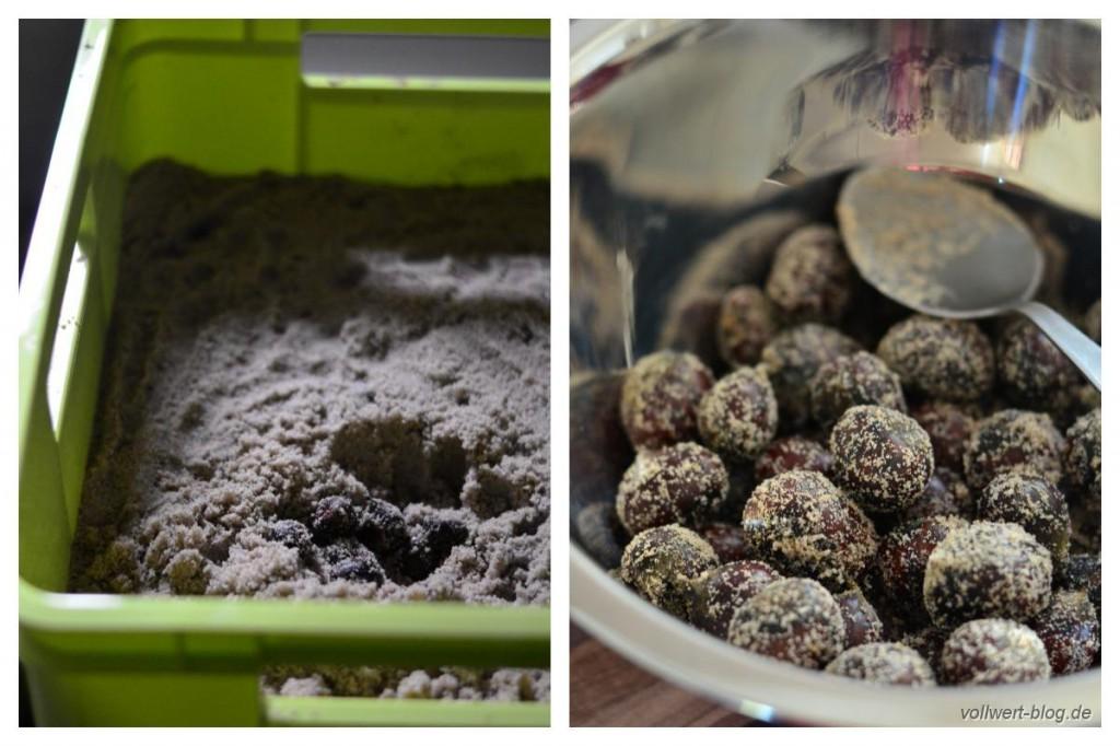Maronen im Sand eingelagert + sandige Maronen