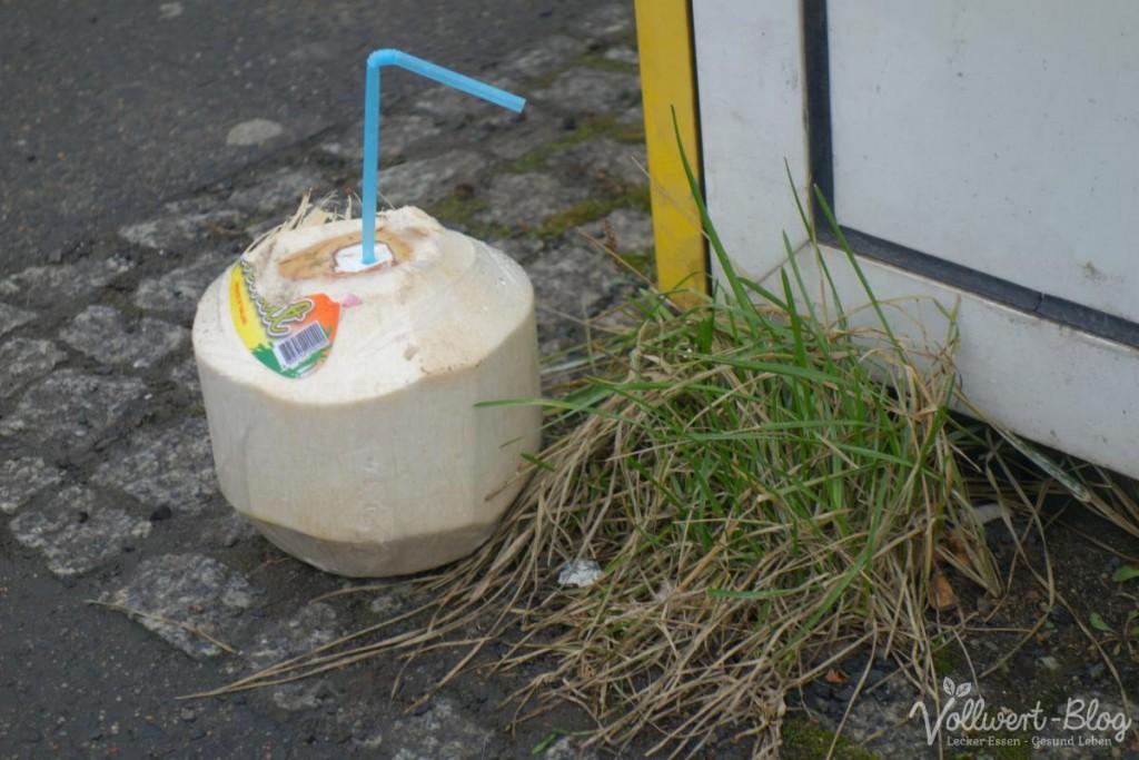 Kokosnuss Müll