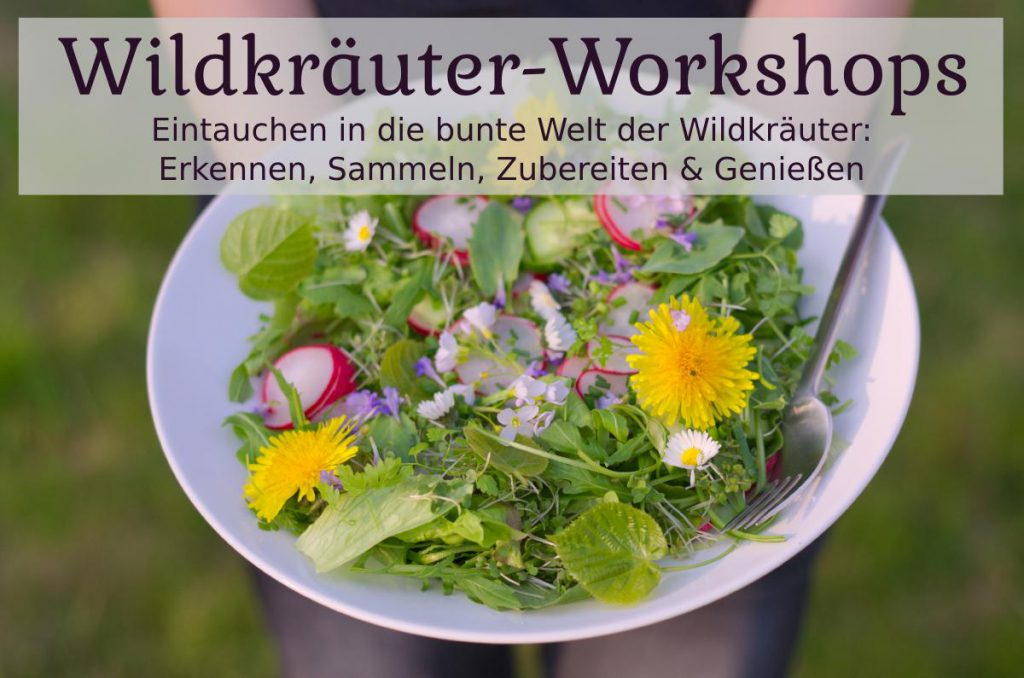 Wildkräuter Workshops